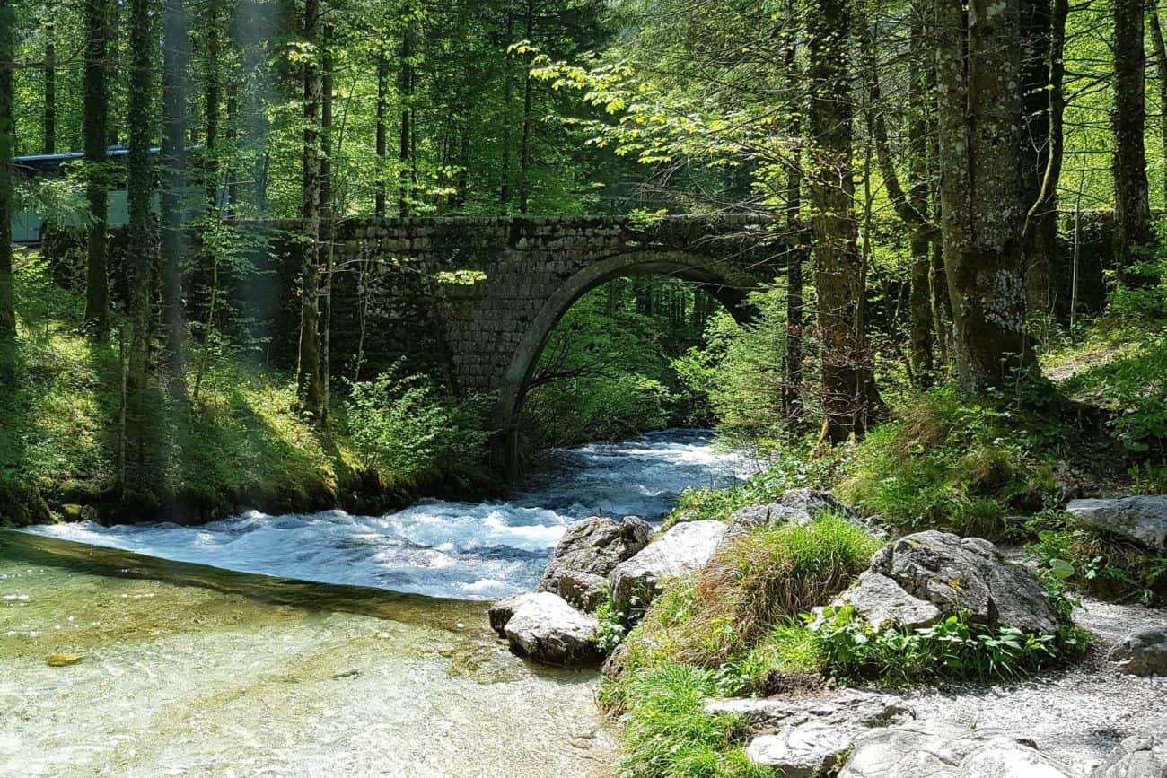 Kamniska Bistrica stream - beautiful hidden piece of nature