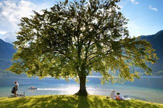 A beautiful day on Lake Bohinj in Slovenia